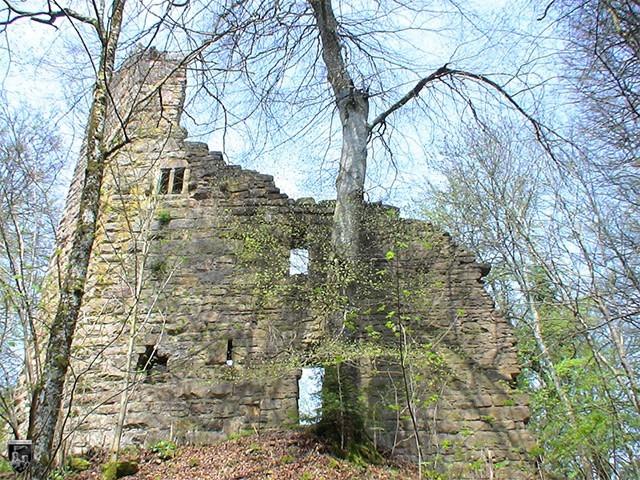 Südmauer der Ruine Lichtenfels